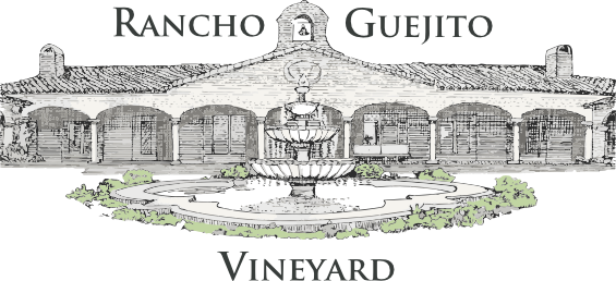 Rancho Guejito Vineyard
